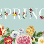 spring cleaning for new website
